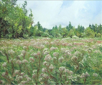Pink Field <br />(Joe Pye Weed)