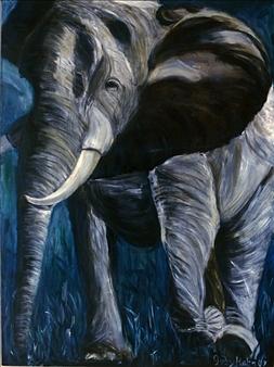 Elephant III