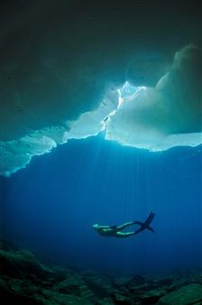Free Under Ice