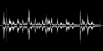The Lady Gaga VoicePix
