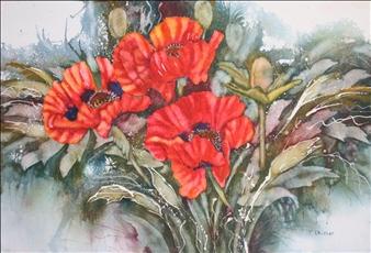Regal Oriental Poppies