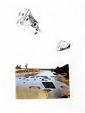 Collage P6