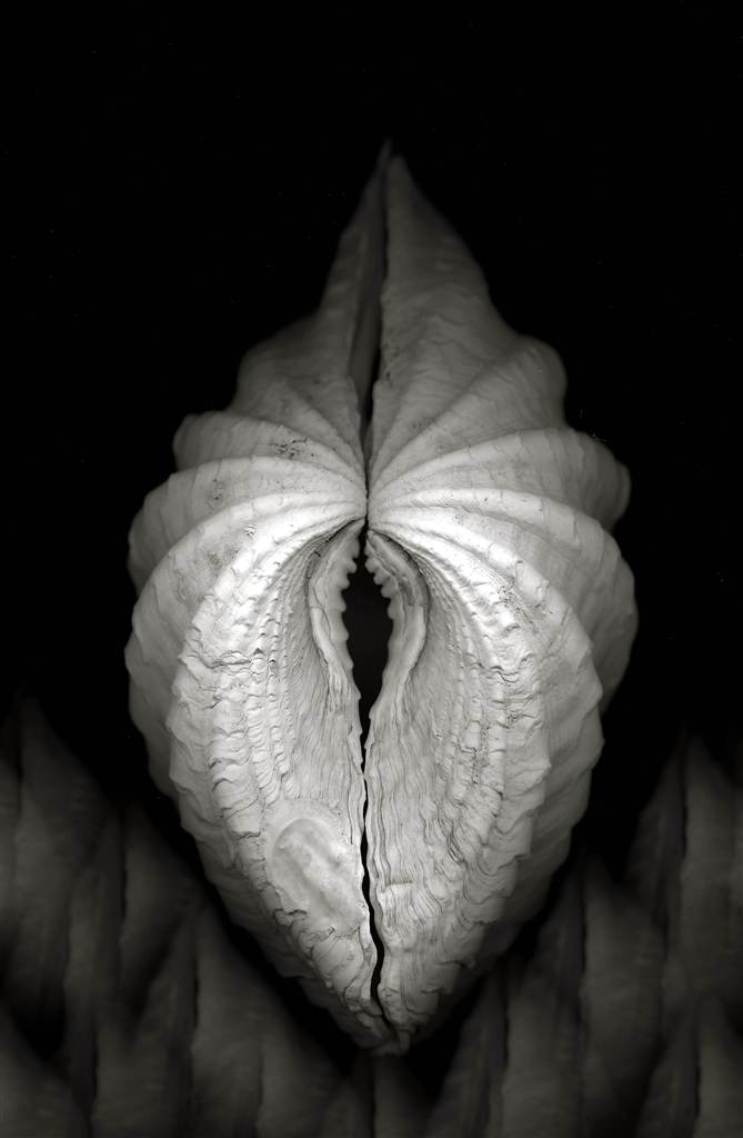 an analysis of a series of photographs by edward weston Edward henry weston (march 24, 1886 – january 1, 1958) was a 20th-century american photographerhe has been called one of the most innovative and influential american photographers.