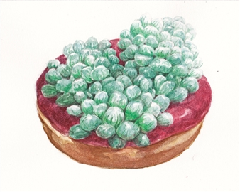 Raspberry Frosting Succulent Donut