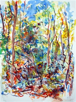 Trees along side Millbrook, Boxford