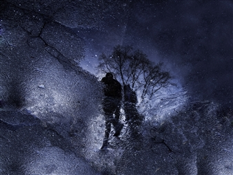 "Stars Walking Photograph on Metallic Paper 22.5"" x 30"""