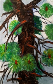 Pine Tree Section