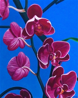 """Key West Orchids Oil on Canvas 24"""" x 30"""""""