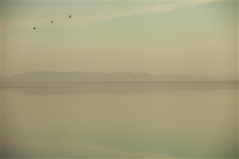 "Salton Sea 4 Photograph on Fine Art Paper 13"" x 19"""