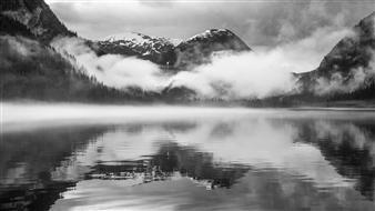 "Breath of a Rainforest Photograph on Fine Art Paper 17"" x 30"""