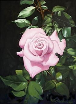 "BBW Rose Oil on Canvas 24"" x 18"""