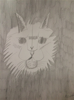 """Whiskers Sr. Graphite on Paper 12"""" x 9"""""""
