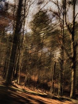 "Fleeting Landscape VI Photograph on Fine Art Paper 20"" x 13"""