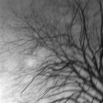"New York 6 Photograph on Fine Art Paper 24"" x 24"""