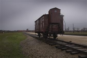 """D.C. Birkenau. Digital Photography 23.5"""" x 35.5"""""""