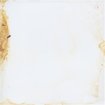 "Toxic Garden #2 Photograph on Fine Art Paper 6"" x 6"""