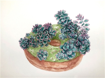 Tricolor Sedum Succulent Donut
