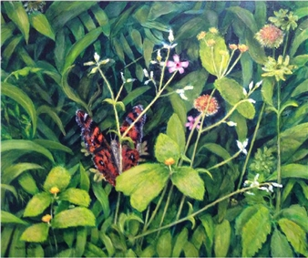 Mariposa Coquette 2
