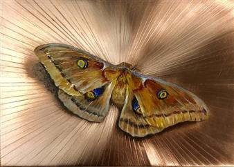 "Moth 1 Oil on Metal 5"" x 7"""