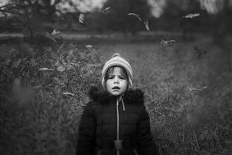 "Transition - Sofia Sitnikiene - United Kingdom Photograph 0"" x 0"""