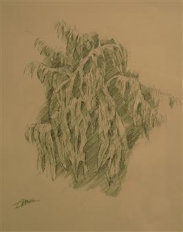 """Sketch for Tropical 2 Polychrome Pencil 14"""" x 12"""""""