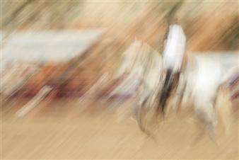 "Rodeo - 2 Photograph on Plexiglass 37"" x 55"""
