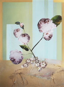 Satin Peonies