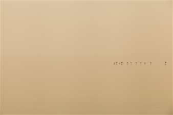 "Salton Sea 3 Photograph on Fine Art Paper 13"" x 19"""
