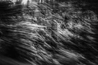 "Fleeting Landscape I Photograph on Fine Art Paper 20"" x 30"""