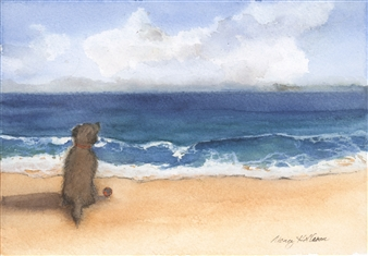 Dog Enjoying the View