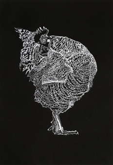 Elegant Rooster