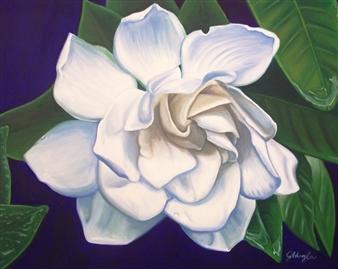"""Gloucester Gardenia Oil on Canvas 24"""" x 30"""""""