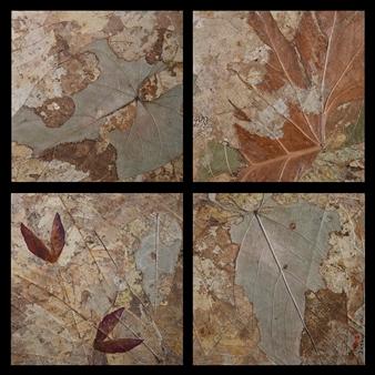 "Liita Collage & Mixed Media on Wood 18"" x 18"""
