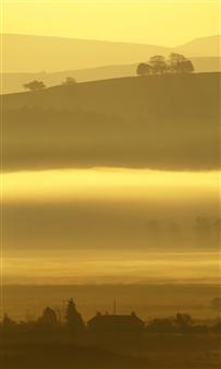 "Genesis 1 v7 Photographic Print on Aluminum Dibond 30"" x 18"""
