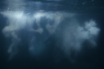 """Submerged Photograph on Fine Art Paper 26.5"""" x 47"""""""