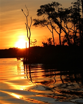 """August on the Wicomico River Photograph on Fine Art Paper 24"""" x 19"""""""