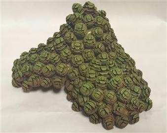 """4 Metasequoia Fruit Shells 5"""" x 9"""""""