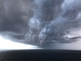 """Skimming the Storm. Photograph on Fine Art Paper 18"""" x 24"""""""