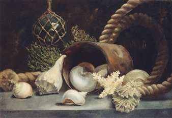 """Shells in Light Oil on Canvas 20"""" x 24"""""""