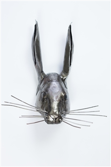 Hare