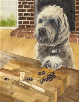 Dog Begging for Cheese