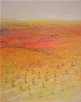 Vignes en Automne