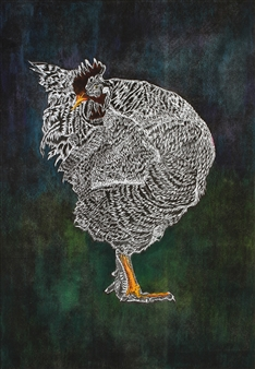 Elegant Rooster in Color