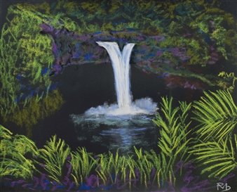 Falls Wailuku River State Park Big Island