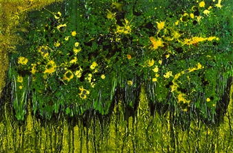 Sprouting Primroses
