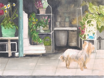 Dog Shopping in Paris