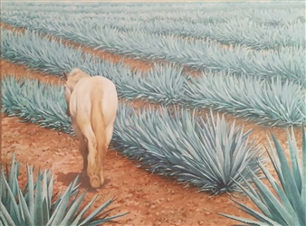 Los Caminos Del Agave Azul  (The Blue Agave Tracks)