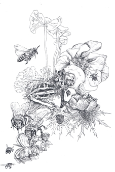 """Bird Skull Floral Pen on Paper 19"""" x 15"""""""