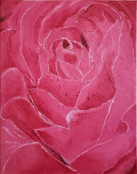 A Rose