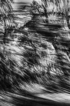 "Fleeting Landscape III Photograph on Fine Art Paper 20"" x 13"""